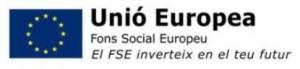 Fons social europeu
